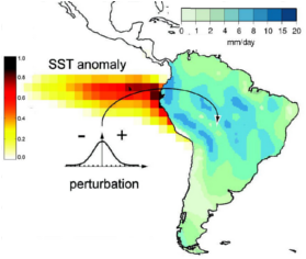 CAM precipitation response to SST perturbations